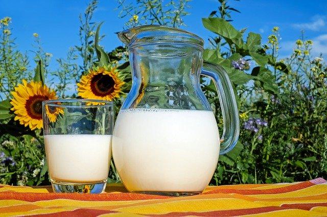 czy mleko jest zdrowe